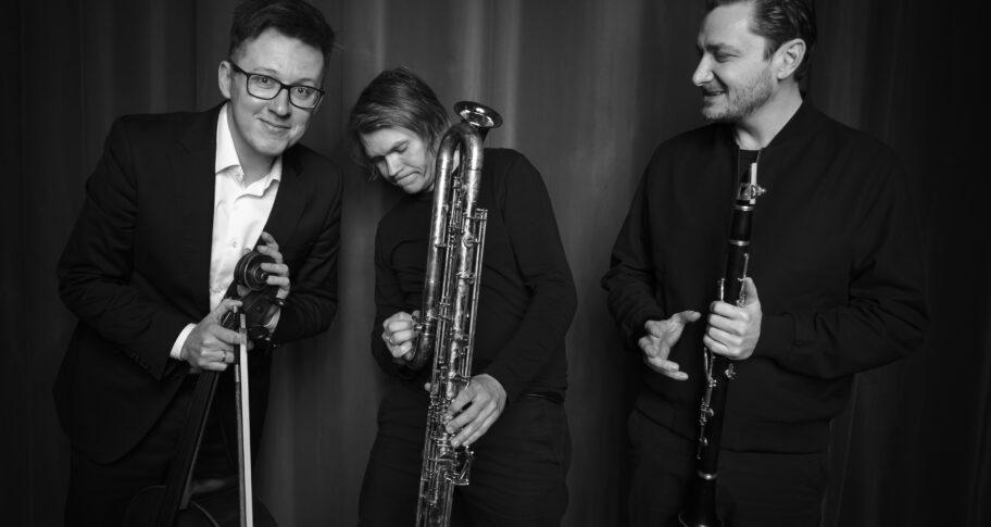 Zdjęcie: Koncert Trio Bastarda na YouTubie Filharmonii Narodowej